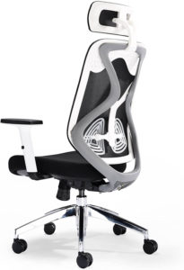 Office Hippo desk chair for back support under 200