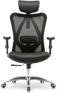 SIHOO Premium budget Computer Chair with Headrest and Lumbar Support